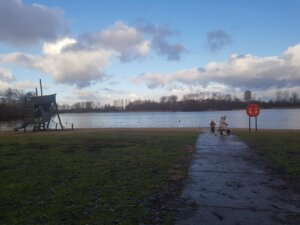 Het Haarlemmermeerse bos