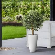 Kunstplant buiten